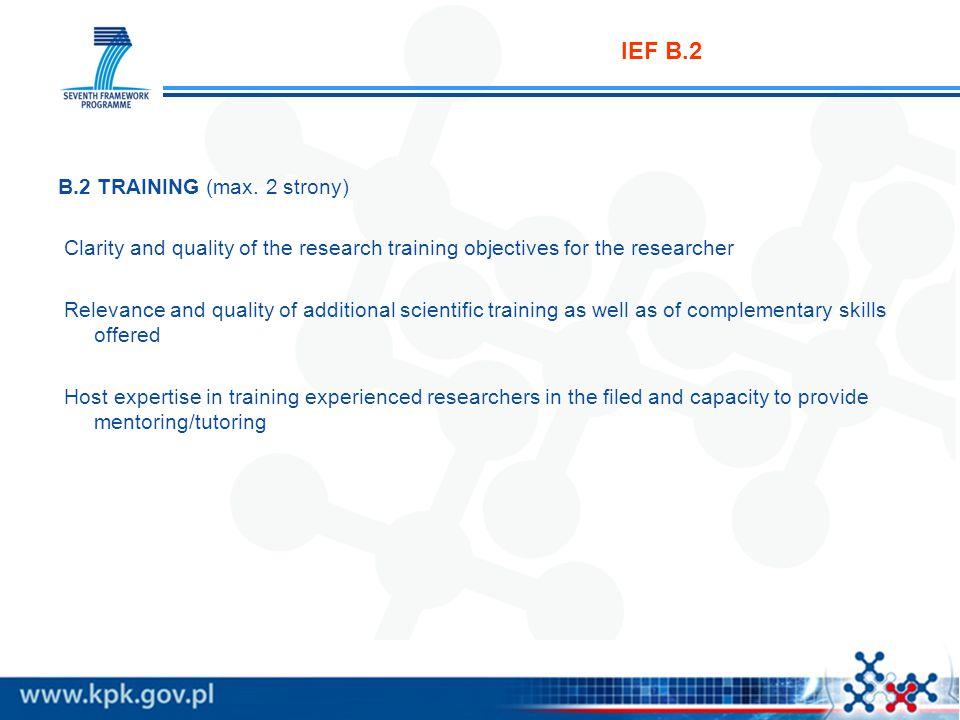 IEF B.3 B.3 RESEARCHER (max.