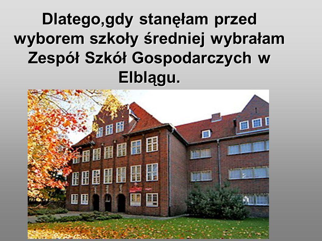 Dlatego,gdy stanęłam przed wyborem szkoły średniej wybrałam Zespół Szkół Gospodarczych w Elblągu.