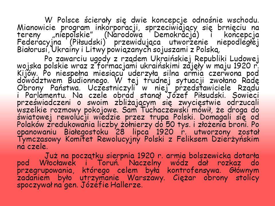 W lutym 1919 r. zaczęło się wycofywanie się armii niemieckiej z tzw. Ober Ostu. Do pierwszych starć między Rosją bolszewicką a Polską doszło 13 lutego
