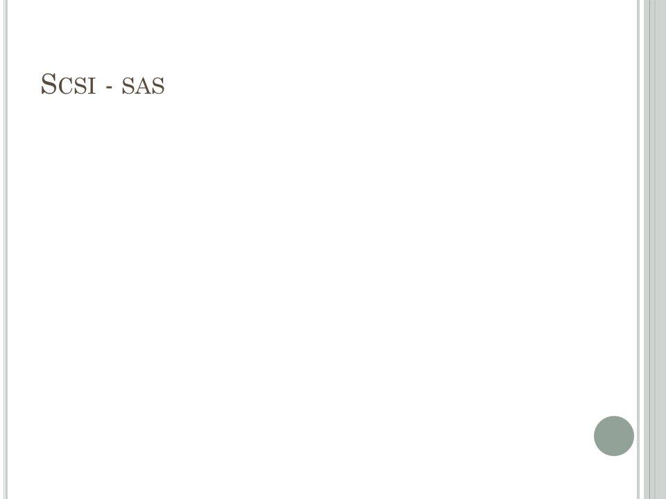 S CSI - SAS
