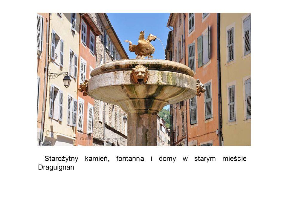 Starożytny kamień, fontanna i domy w starym mieście Draguignan