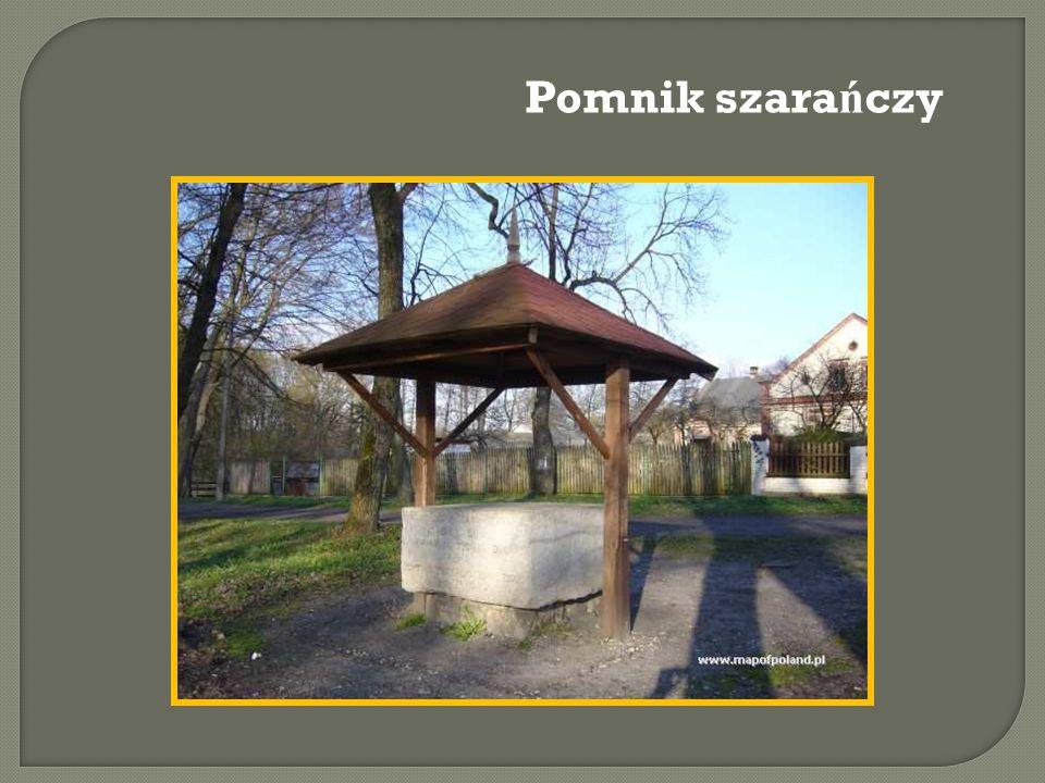 Pomnik szara ń czy