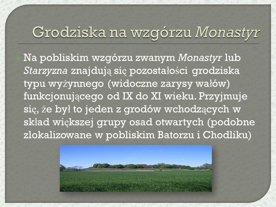  Na pobliskim wzgórzu zwanym Monastyr lub Starzyzna znajduj ą si ę pozosta ł o ś ci grodziska typu wy ż ynnego (widoczne zarysy wa ł ów) funkcjonuj ą cego od IX do XI wieku.