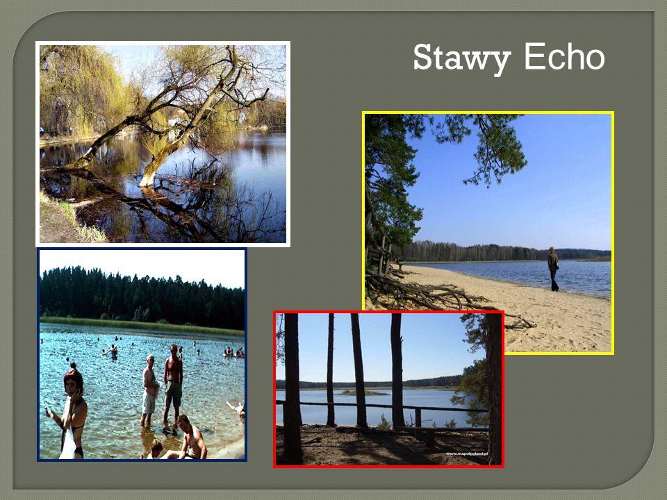 Stawy Echo