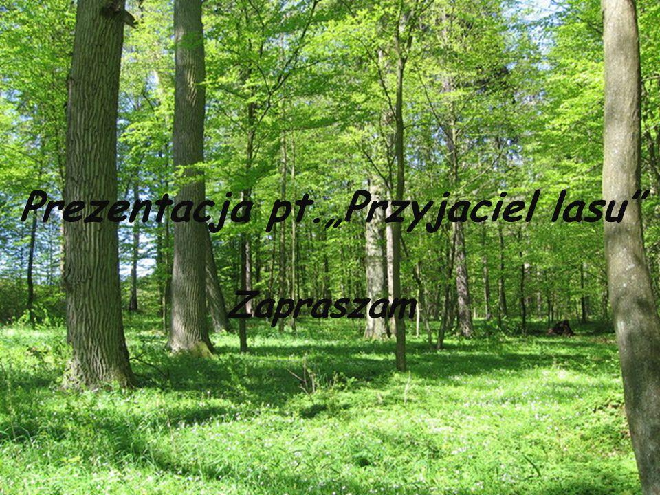 """Prezentacja pt.""""Przyjaciel lasu"""" Zapraszam"""