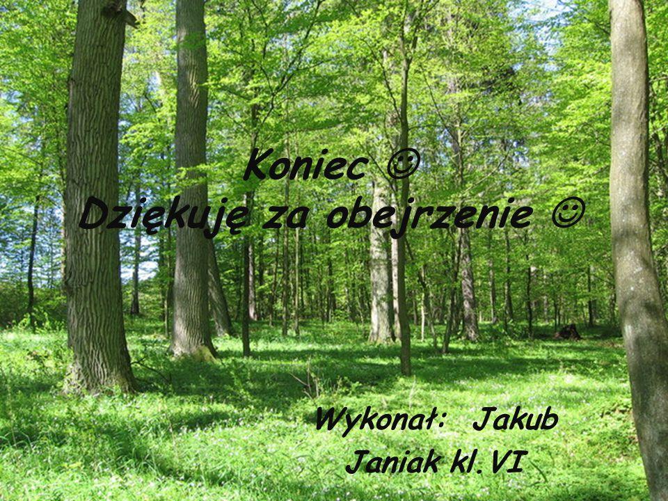 Koniec Dziękuję za obejrzenie Wykonał: Jakub Janiak kl.VI