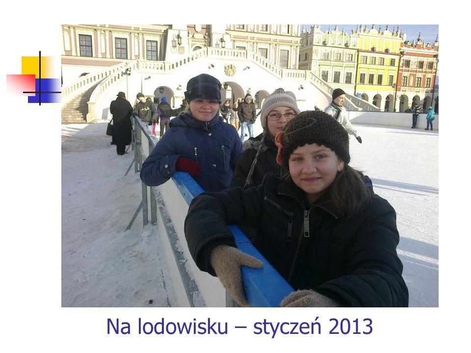 Na lodowisku – styczeń 2013