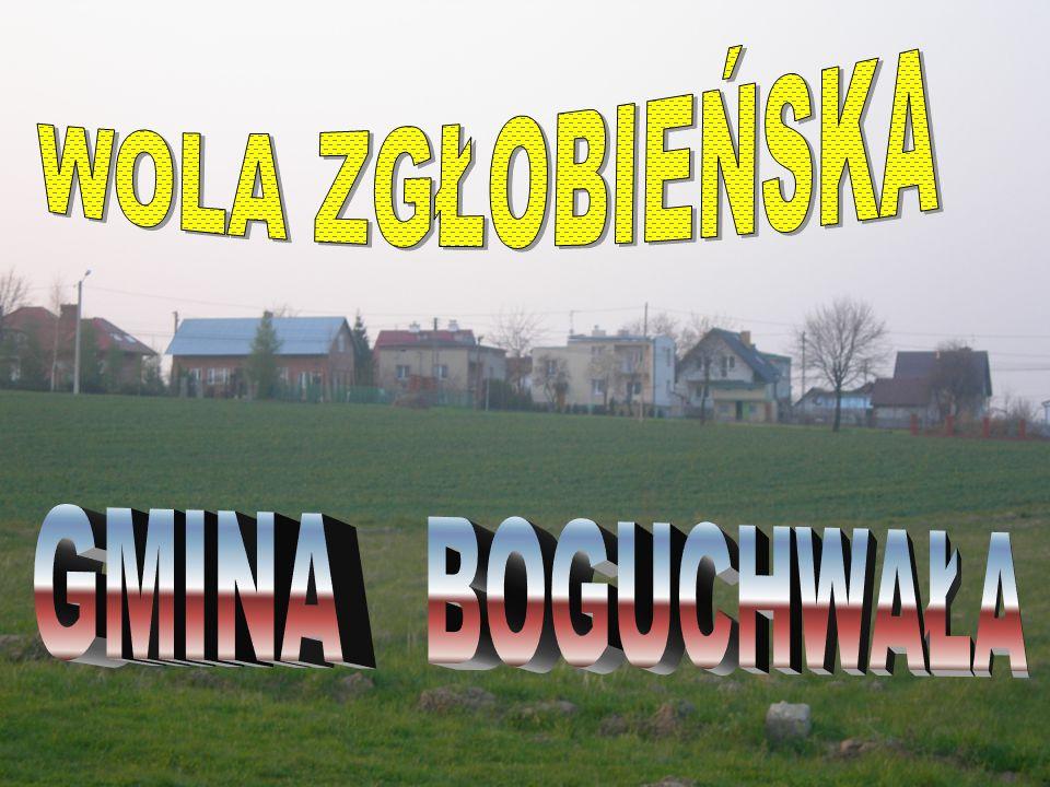 - Park narodowy - Park krajobrazowy - Obszar chronionego krajobrazu - Ochrona gatunkowa - Rezerwat przyrody - Pomnik przyrody Formy ochrony przyrody w Polsce