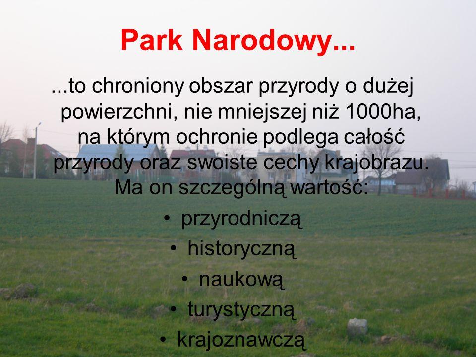 Bieszczadzki Park Narodowy Bieszczadzki Park Narodowy, utworzony w 1973, pierwotnie obejmował 5624 ha (grzbiet Połoniny Caryńskiej i grupę Tarnicy), powiększony w 1991 do 27 064 ha.