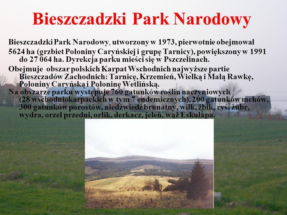 Magurski Park Narodowy Magurski Park Narodowy, utworzony w 1995, na pograniczu województwa krośnieńskiego (97%) i nowosądeckiego.