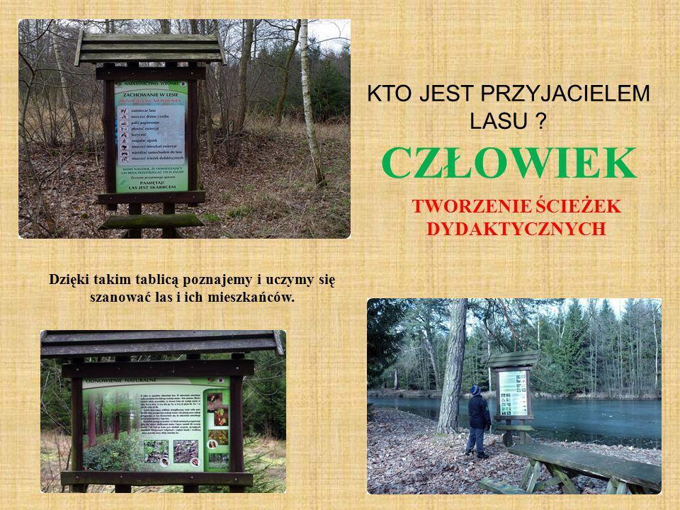 Dzięki takim tablicą poznajemy i uczymy się szanować las i ich mieszkańców. KTO JEST PRZYJACIELEM LASU ? CZŁOWIEK TWORZENIE ŚCIEŻEK DYDAKTYCZNYCH