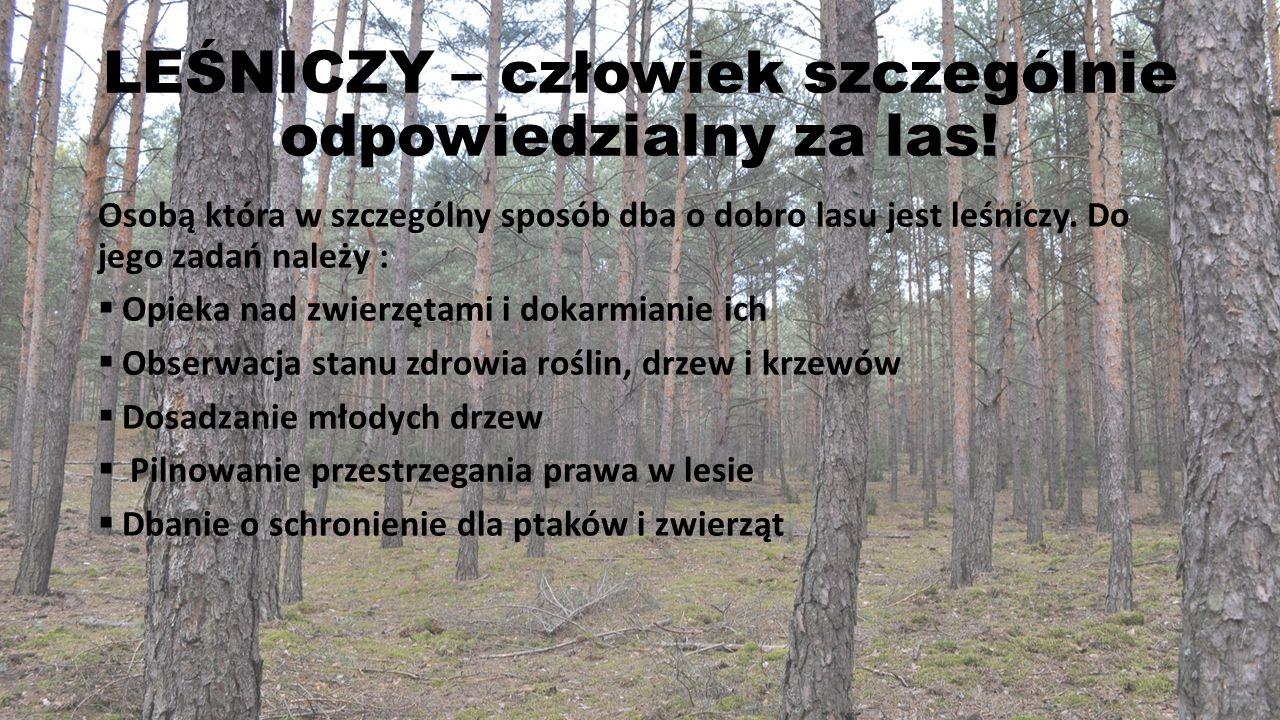 LEŚNICZY – człowiek szczególnie odpowiedzialny za las! Osobą która w szczególny sposób dba o dobro lasu jest leśniczy. Do jego zadań należy :  Opieka