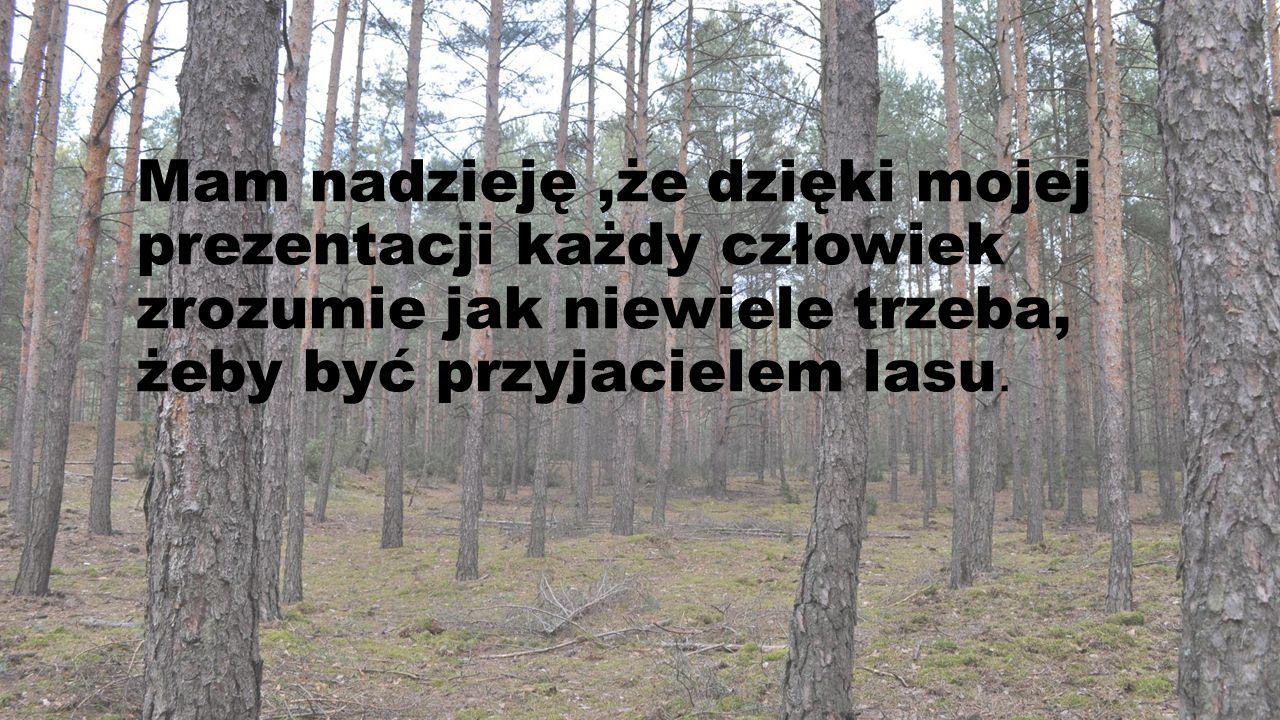 Mam nadzieję,że dzięki mojej prezentacji każdy człowiek zrozumie jak niewiele trzeba, żeby być przyjacielem lasu.