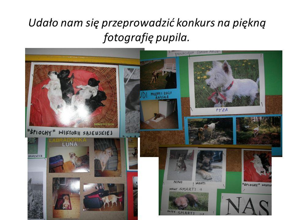 Udało nam się przeprowadzić konkurs na piękną fotografię pupila.