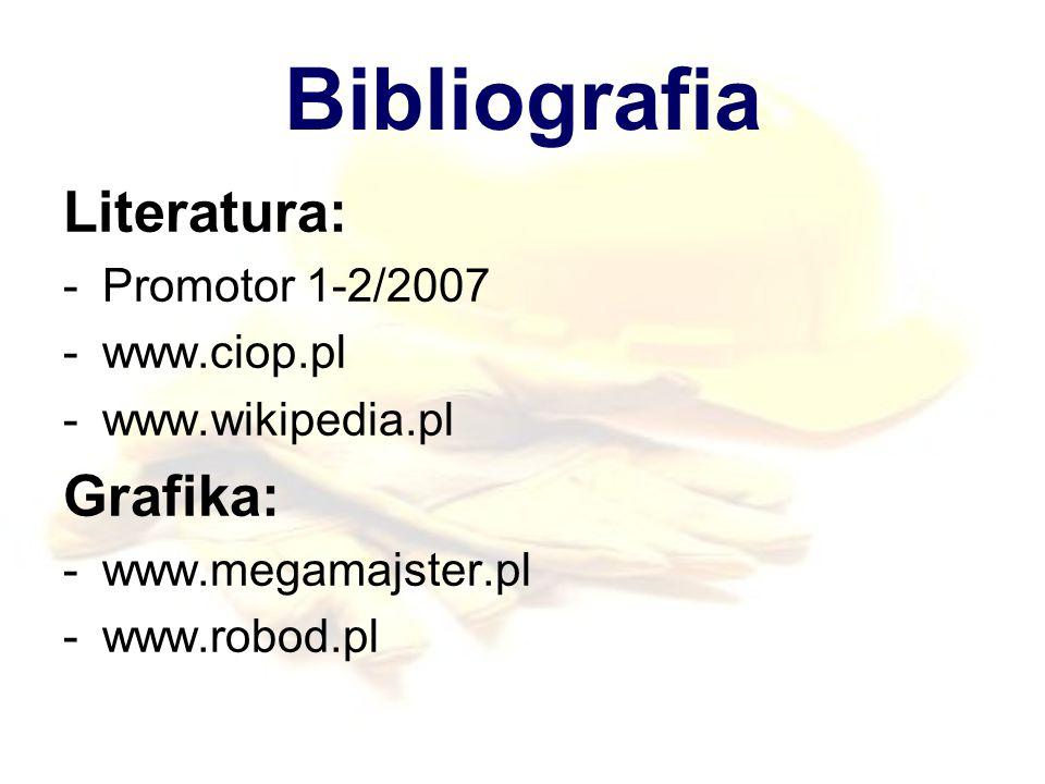 Bibliografia Literatura: -Promotor 1-2/2007 -www.ciop.pl -www.wikipedia.pl Grafika: -www.megamajster.pl -www.robod.pl