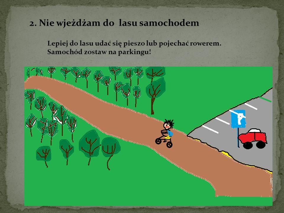 2.Nie wjeżdżam do lasu samochodem Lepiej do lasu udać się pieszo lub pojechać rowerem.