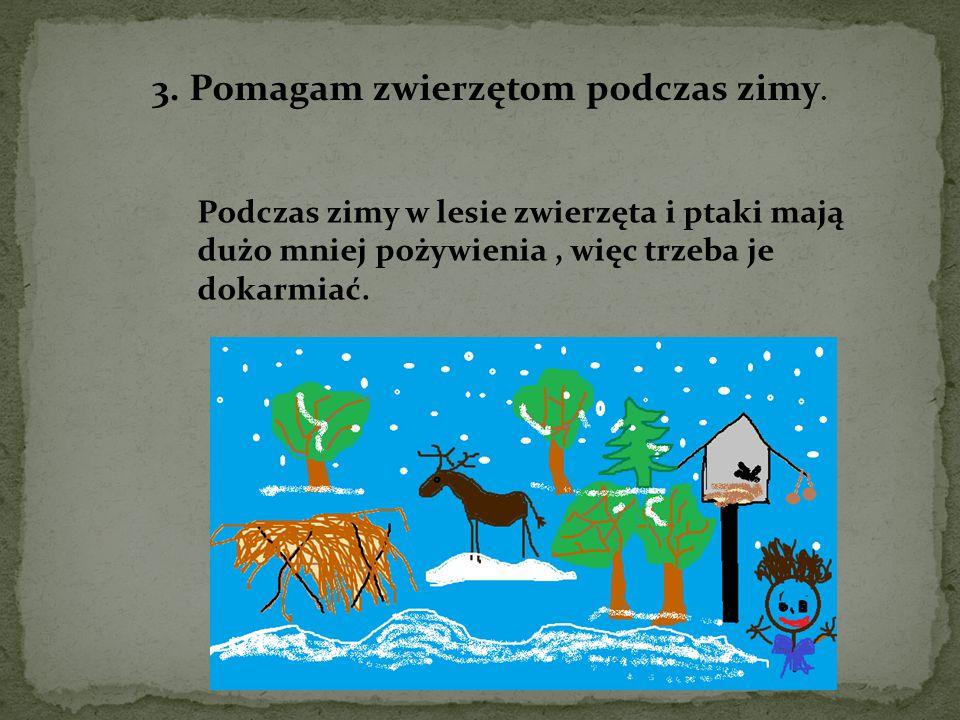 3. Pomagam zwierzętom podczas zimy. Podczas zimy w lesie zwierzęta i ptaki mają dużo mniej pożywienia, więc trzeba je dokarmiać.