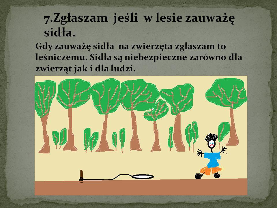 7.Zgłaszam jeśli w lesie zauważę sidła. Gdy zauważę sidła na zwierzęta zgłaszam to leśniczemu. Sidła są niebezpieczne zarówno dla zwierząt jak i dla l