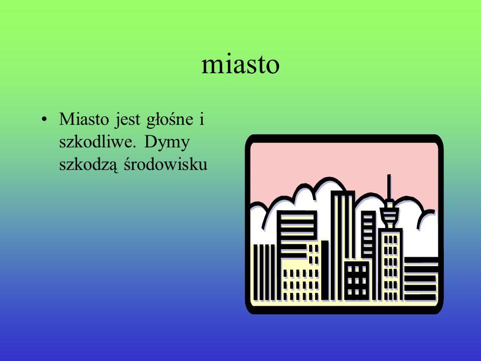 miasto Miasto jest głośne i szkodliwe. Dymy szkodzą środowisku