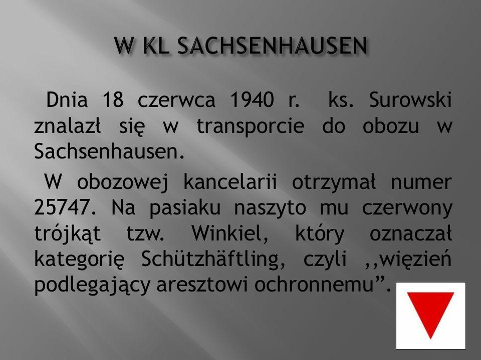 Dnia 18 czerwca 1940 r. ks. Surowski znalazł się w transporcie do obozu w Sachsenhausen. W obozowej kancelarii otrzymał numer 25747. Na pasiaku naszyt