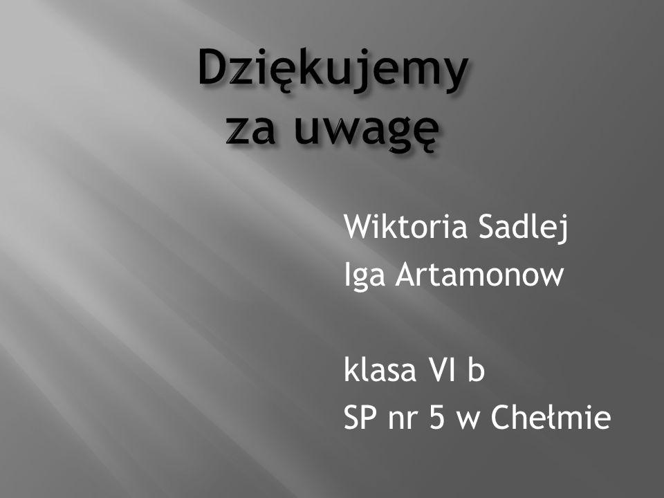 Wiktoria Sadlej Iga Artamonow klasa VI b SP nr 5 w Chełmie