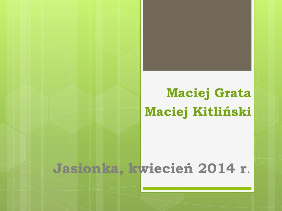 Jasionka, kwiecień 2014 r. Maciej Grata Maciej Kitliński