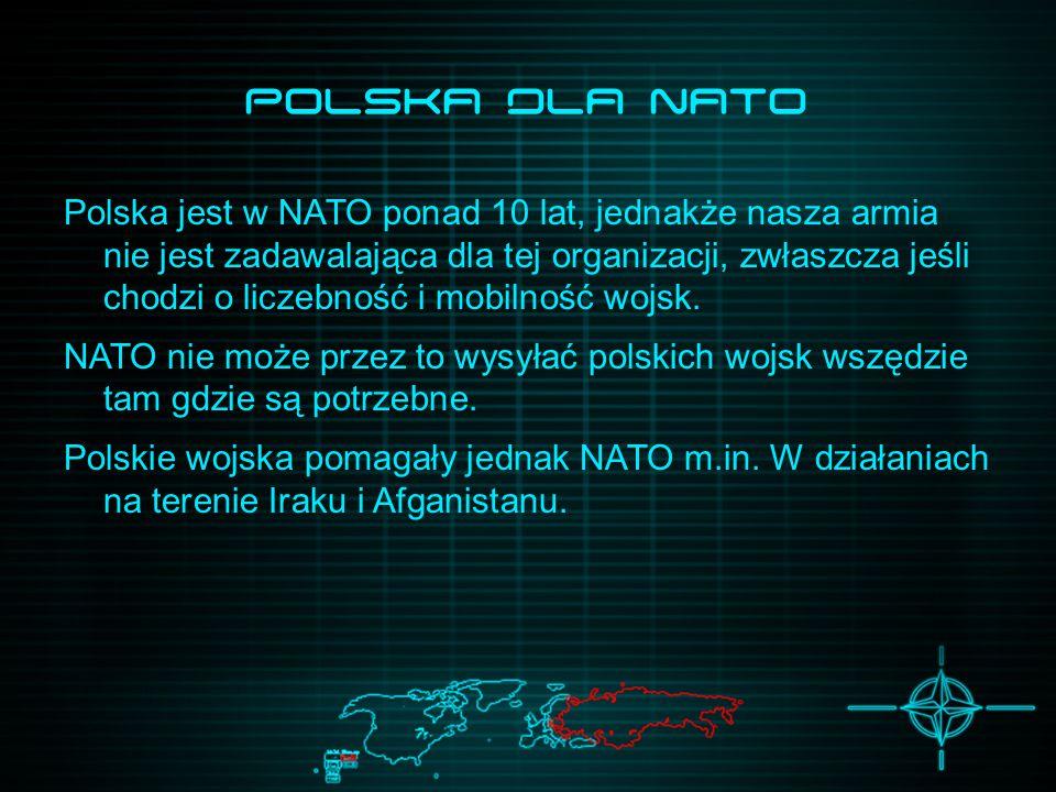 Polska dla NATO Polska jest w NATO ponad 10 lat, jednakże nasza armia nie jest zadawalająca dla tej organizacji, zwłaszcza jeśli chodzi o liczebność i