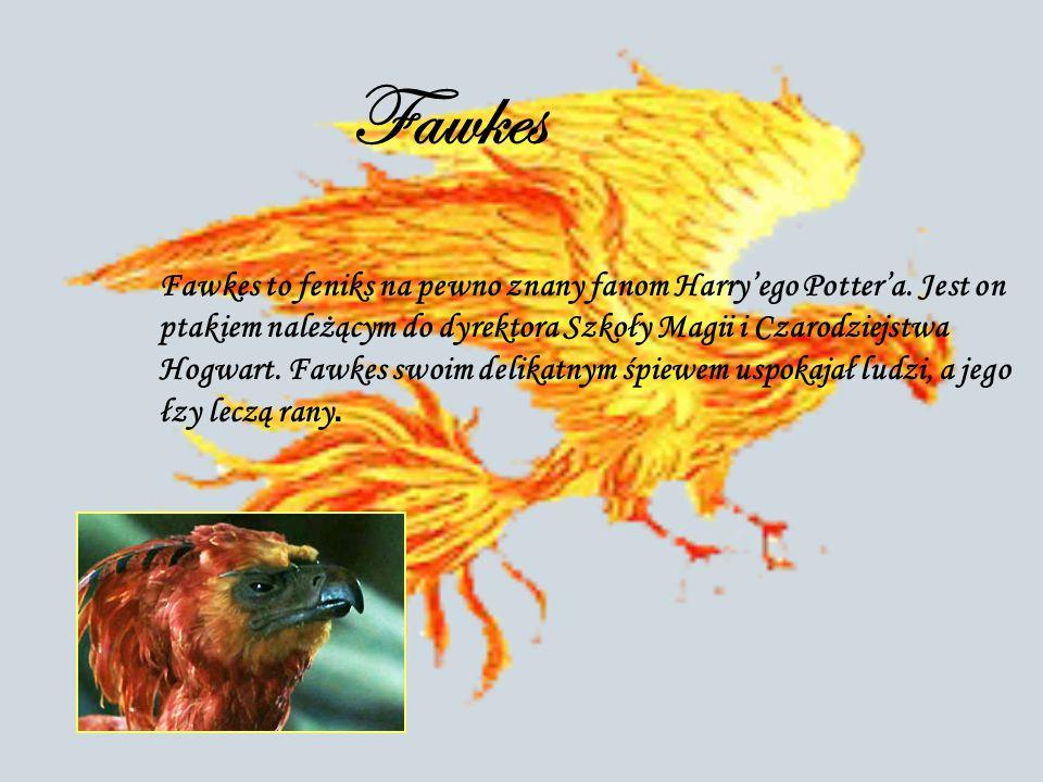 Fawkes Fawkes to feniks na pewno znany fanom Harry'ego Potter'a. Jest on ptakiem należącym do dyrektora Szkoły Magii i Czarodziejstwa Hogwart. Fawkes