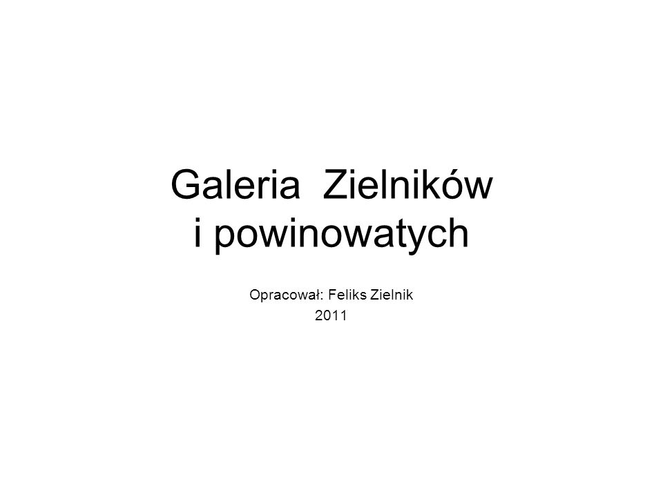 Galeria Zielników i powinowatych Opracował: Feliks Zielnik 2011