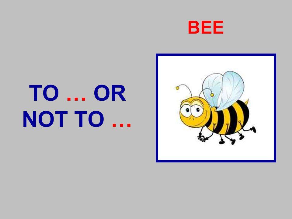 BEE TO … OR NOT TO …