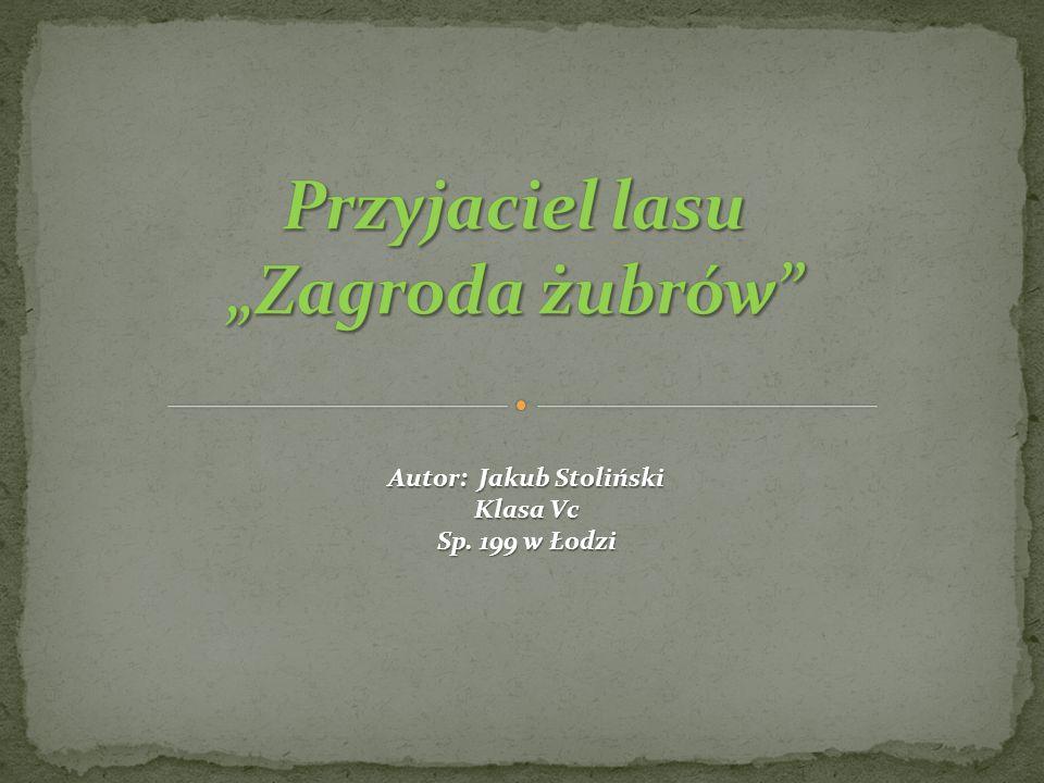 Autor: Jakub Stoliński Klasa Vc Sp. 199 w Łodzi