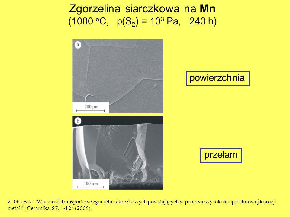 Zgorzelina siarczkowa na Mn (1000 o C, p(S 2 ) = 10 3 Pa, 240 h) powierzchnia przełam Z. Grzesik,