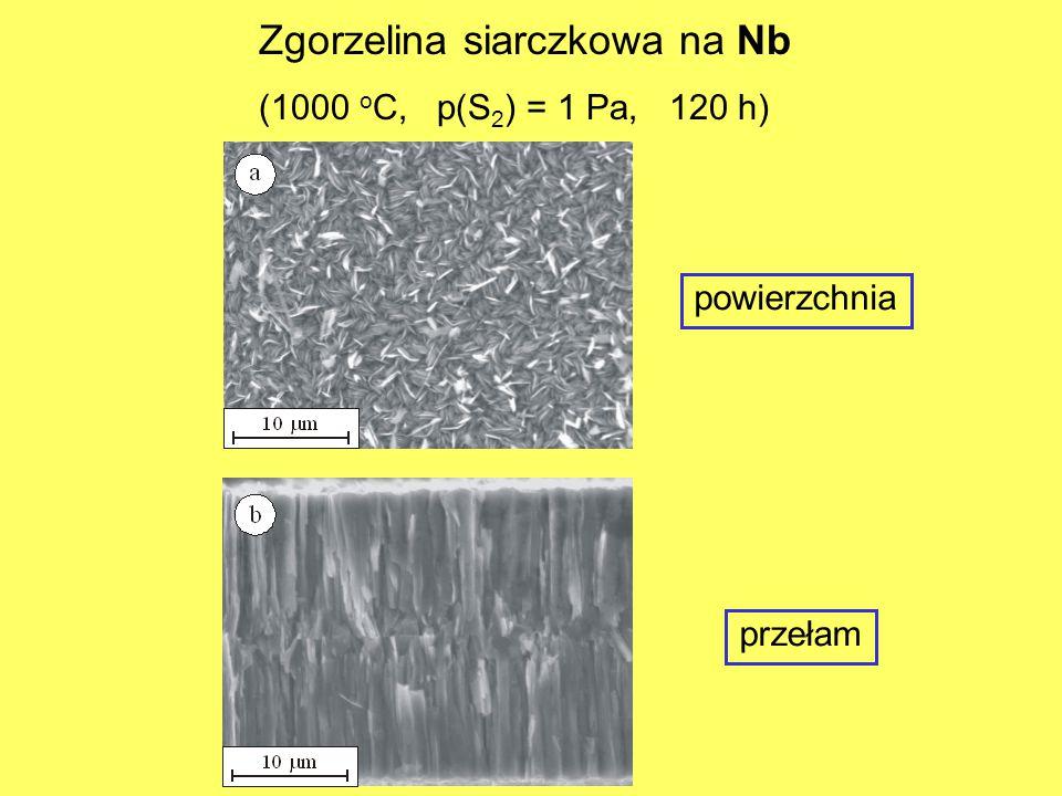 powierzchnia przełam Zgorzelina siarczkowa na Nb (1000 o C, p(S 2 ) = 1 Pa, 120 h)