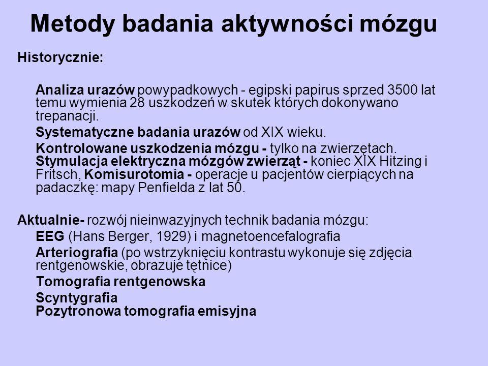 Metody badania aktywności mózgu Historycznie: Analiza urazów powypadkowych - egipski papirus sprzed 3500 lat temu wymienia 28 uszkodzeń w skutek który