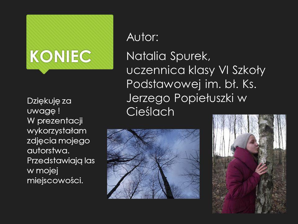 KONIEC Autor: Natalia Spurek, uczennica klasy VI Szkoły Podstawowej im.