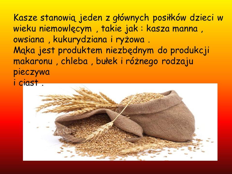 Kasze stanowią jeden z głównych posiłków dzieci w wieku niemowlęcym, takie jak : kasza manna, owsiana, kukurydziana i ryżowa. Mąka jest produktem niez