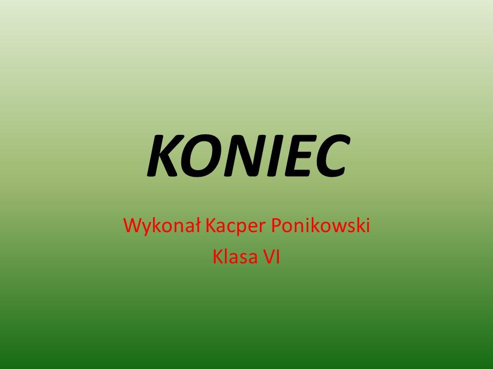 KONIEC Wykonał Kacper Ponikowski Klasa VI