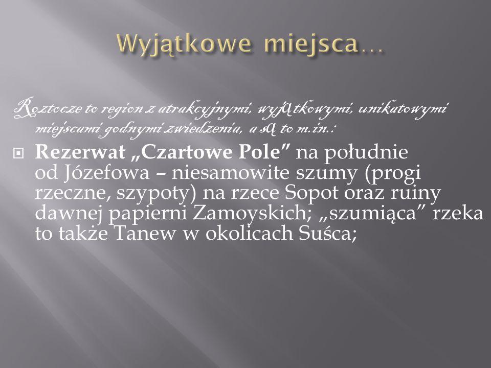 """Roztocze to region z atrakcyjnymi, wyj ą tkowymi, unikatowymi miejscami godnymi zwiedzenia, a s ą to m.in.:  Rezerwat """"Czartowe Pole"""" na południe od"""