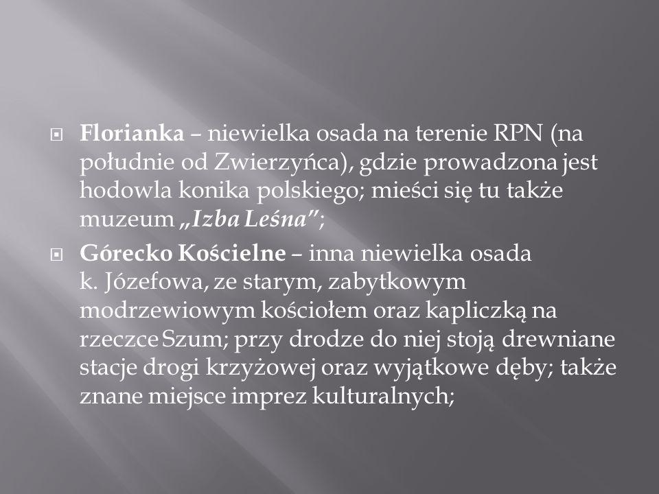 """ Florianka – niewielka osada na terenie RPN (na południe od Zwierzyńca), gdzie prowadzona jest hodowla konika polskiego; mieści się tu także muzeum """""""