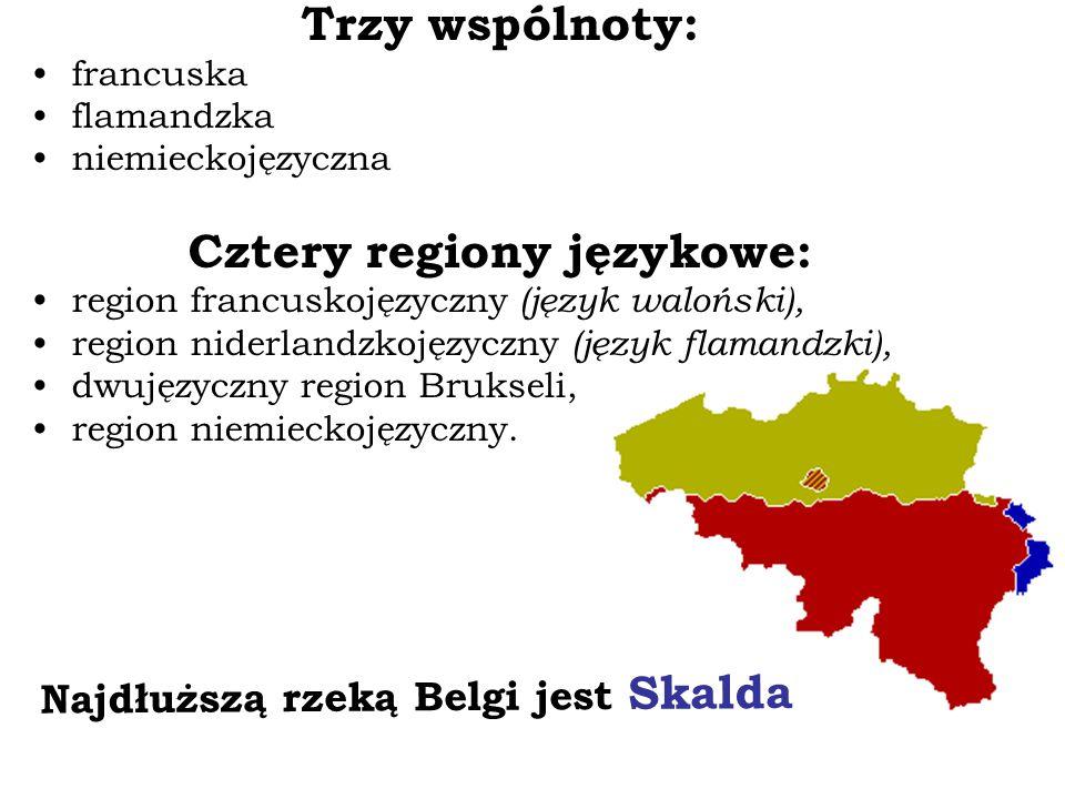 Trzy wspólnoty: francuska flamandzka niemieckojęzyczna Cztery regiony językowe: region francuskojęzyczny (język waloński), region niderlandzkojęzyczny