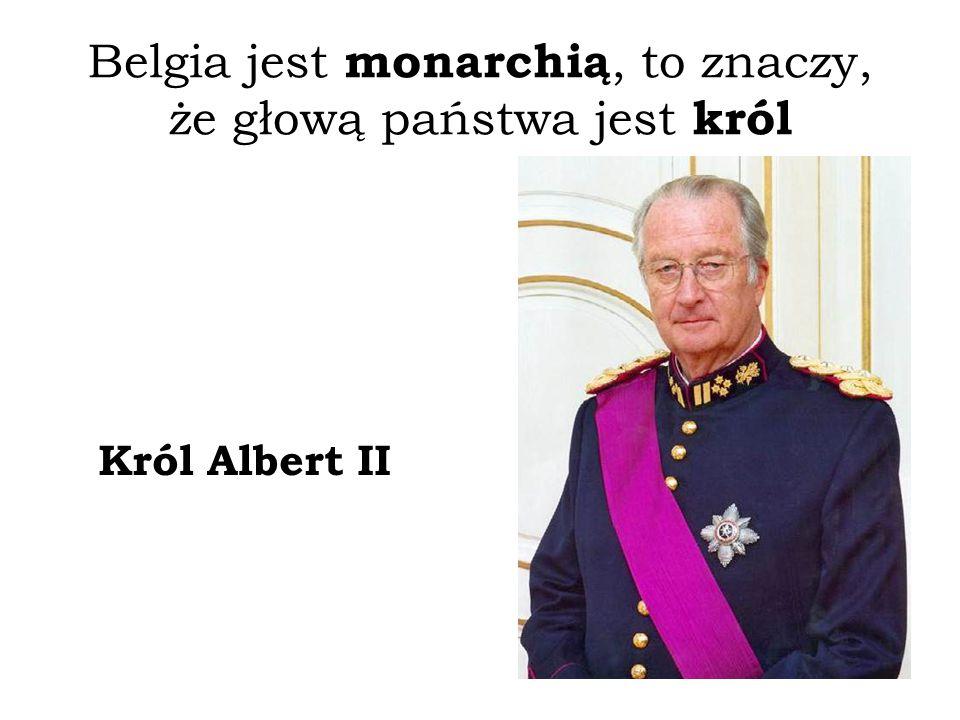 Belgia jest monarchią, to znaczy, że głową państwa jest król Król Albert II