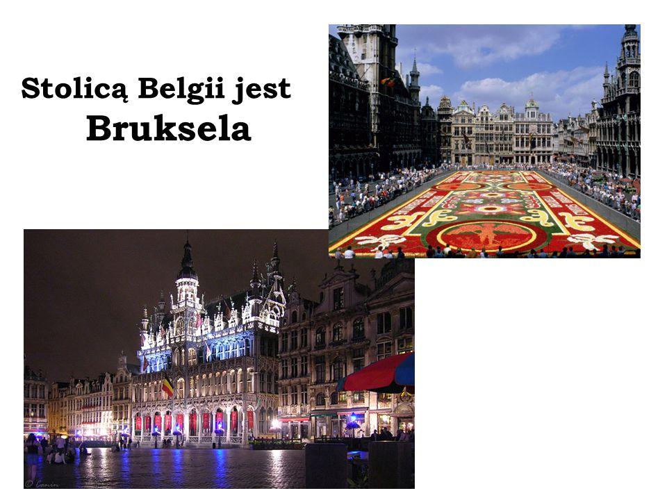Stolicą Belgii jest Bruksela