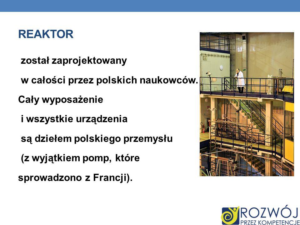 REAKTOR został zaprojektowany w całości przez polskich naukowców.