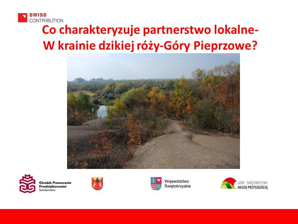 Co charakteryzuje partnerstwo lokalne- W krainie dzikiej róży-Góry Pieprzowe