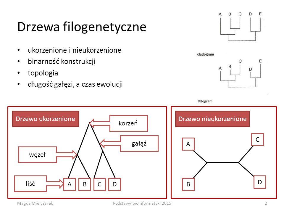 Drzewa filogenetyczne ukorzenione i nieukorzenione binarność konstrukcji topologia długość gałęzi, a czas ewolucji ABCD korzeń węzeł gałąź Drzewo ukorzenione A D C B Drzewo nieukorzenione liść Magda Mielczarek2Podstawy bioinformatyki 2015