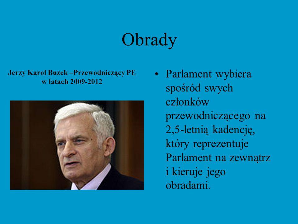 Obrady Parlament nie używa jednego języka obrad.