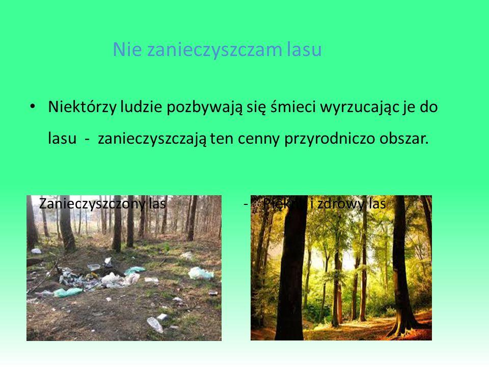 Nie zanieczyszczam lasu Niektórzy ludzie pozbywają się śmieci wyrzucając je do lasu - zanieczyszczają ten cenny przyrodniczo obszar.