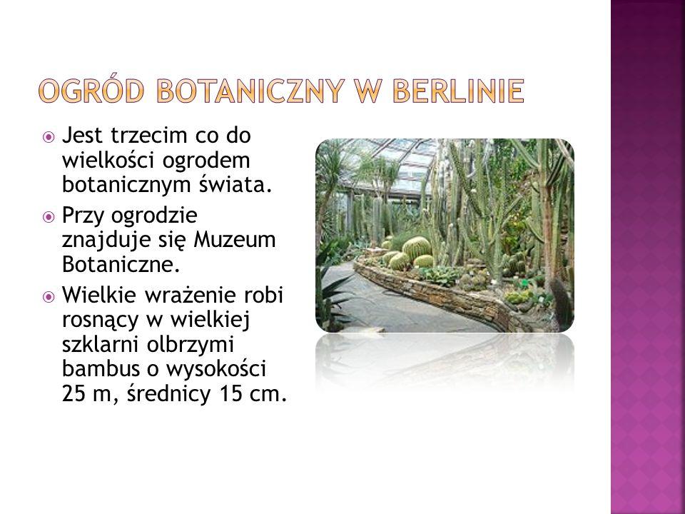  Jest trzecim co do wielkości ogrodem botanicznym świata.  Przy ogrodzie znajduje się Muzeum Botaniczne.  Wielkie wrażenie robi rosnący w wielkiej