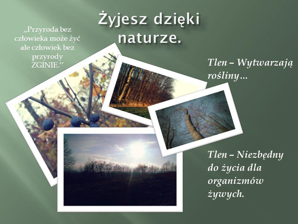 Tlen – Wytwarzają rośliny… Tlen – Niezbędny do życia dla organizmów żywych.,,Przyroda bez człowieka może żyć ale człowiek bez przyrody ZGINIE.''