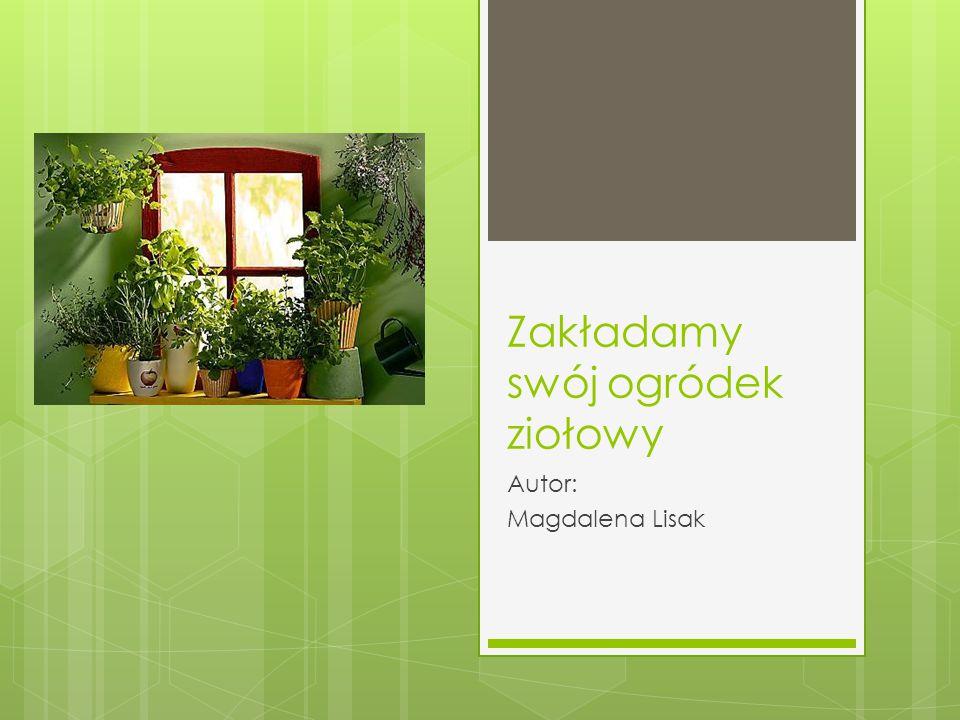 Zakładamy swój ogródek ziołowy Autor: Magdalena Lisak